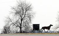Iowa Amish