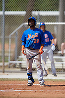 New York Mets John Mora (39) bats during a minor league Spring Training game against the St. Louis Cardinals on March 28, 2017 at the Roger Dean Stadium Complex in Jupiter, Florida.  (Mike Janes/Four Seam Images)