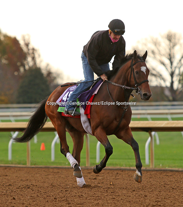 March To The Arch, trained by trainer Mark E. Casse, exercises in preparation for the Breeders' Cup Mile at Keeneland Racetrack in Lexington, Kentucky on November 1, 2020. /CSM