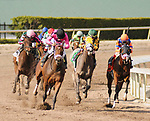 HALLANDALE BEACH, FL - APRIL 01: Salty (trained by Mark Casse) with Joel Rosario aboard, take the lead through the turn in the 47th running of the Gulfstream Park Oaks at Gulfstream Park on April 01, 2017 in Hallandale Beach, Florida. (Photo by Carson Dennis/Eclipse Sportswire/Getty Images)