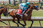 ARCADIA, CA  JULY 4:  #1 Classier, ridden by Mike Smith, first time past the stands in the Los Alamitos Derby (Grade lll) on July 4, 2021 at Los Alamitos Race Course in Los Alamitos, CA.  (Photo by Casey Pnillips/ Eclipse Sportswire/ CSM)