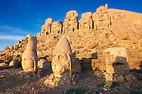 Pictures of the statues of around the tomb of Commagene King Antochus 1 on the top of Mount Nemrut, Turkey. Stock photos & Photo art prints. In 62 BC, King Antiochus I Theos of Commagene built on the mountain top a tomb-sanctuary flanked by huge statues (8–9 m/26–30 ft high) of himself, two lions, two eagles and various Greek, Armenian, and Iranian gods. The photos show the broken statues on the  2,134 m (7,001 ft)  mountain. 2