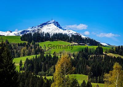 Oesterreich, Tirol, Fieberbrunn: oberhalb von Fieberbrunn, im Hintergrund das schneebedeckte Kitzbueheler Horn   Austria, Tyrol, Fieberbrunn: above Fieberbrunn, at background snowcapped summitKitzbueheler Horn