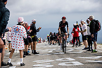 Tao Geoghegan Hart (GBR/Ineos Grenadiers) on the Mont Ventoux<br /> <br /> <br /> Stage 11 from Sorgues to Malaucène (198.9km)<br /> 108th Tour de France 2021 (2.UWT)<br /> <br /> ©kramon