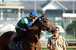May 08, 2015  American Pharoah returned to galloping at Churchill Downs following his win in the 2015 Kentucky Derby.  He was ridden by his exercise rider Georgie Alvarez.  He is pointed toward the Preakness Stakes at Pimlico on May 16. Owner Zayat Stables, trainer Bob Baffert. By Pioneerof The Nile x Littleprincessemma (Yankee Gentleman.) Mary M. Meek/ESW/CSM