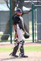 Wilin Rosario, Colorado Rockies 2010 minor league spring training..Photo by:  Bill Mitchell/Four Seam Images.