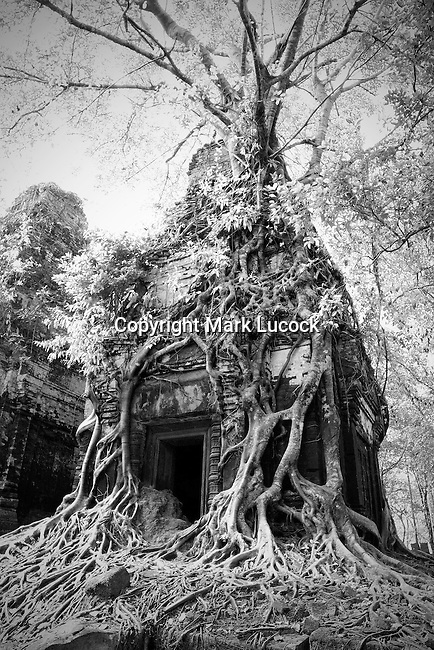 Prasat Pram or 5 Temples at Koh Ker, Cambodia - Infrared Image
