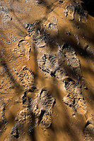 Photo story of Philmont Scout Ranch in Cimarron, New Mexico, taken during a Boy Scout Troop backpack trip in the summer of 2013. Photo is part of a comprehensive picture package which shows in-depth photography of a BSA Ventures crew on a trek.  In this photo heavy rains have left lots of mud for passing crews to leave their footprints within in the backcountry at Philmont Scout Ranch.   <br /> <br /> The  Photo by travel photograph: PatrickschneiderPhoto.com