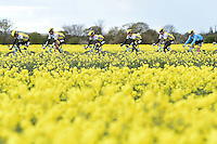 Picture by Alex Broadway/SWpix.com - 30/04/2016 - Cycling - 2016 Tour de Yorkshire, Stage 2: Otley to Doncaster - Yorkshire, England - Team Lotto NL Jumbo make their way through the route.