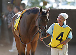 Love's Blush, trained by Rodney Jenkins, walks in the paddock before the Grade II Delaware Handicap at Delaware Park. One of two longshots in the five-horse field, the 5-year-old mare finished fourth. Stanton, DE,  July 16, 2011. (Joan Fairman Kanes/Eclipsesportswire)