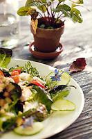 Salad of the day served on the terrace at Zehendermätteli restaurant, Bern, Switzerland, 26 August 2011.