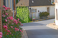 A street with village houses and road signs to Epernay, Cumieres and the Route de Champagne (the touristique tourist wine route of Champagne), roses in the foreground, the village of Hautvillers in Vallee de la Marne, Champagne, Marne, Ardennes, France