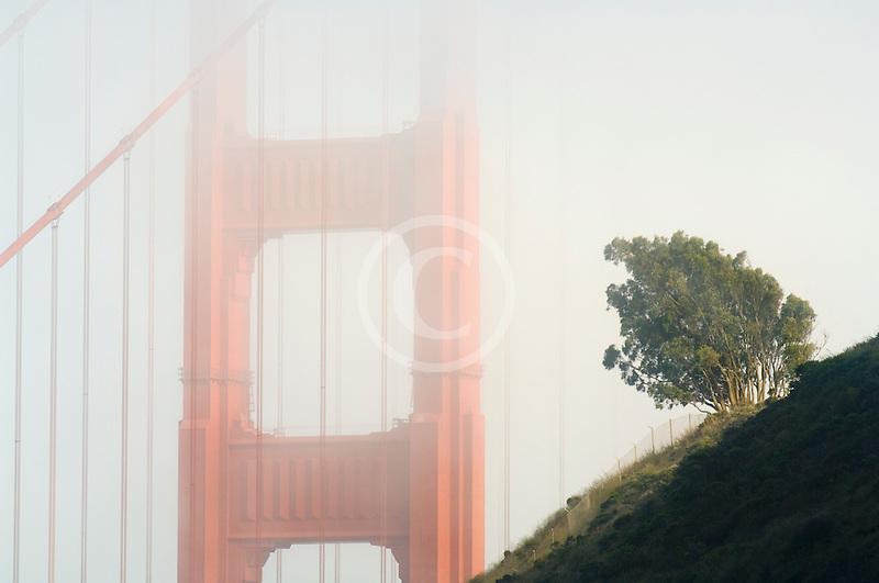 California, San Francisco Bay, Golden Gate Bridge in fog