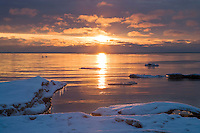 Sunrise light on swans and ice formations in Lake Michigan at Newport State Park; Door County, WI