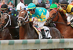 October 01, 2014:  Mr. Z in the Iroquois Stakes at Churchill Downs on September 6, 2014.  Candice Chavez/ESW/CSM