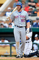 New York Mets outfielder Jamie Hoffman #80 during a Spring Training game against the Detroit Tigers at Joker Marchant Stadium on March 11, 2013 in Lakeland, Florida.  New York defeated Detroit 11-0.  (Mike Janes/Four Seam Images)