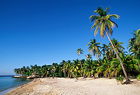 WEST END BEACH, a tropical paradise with PALM TREES, BLUE SKY, & CARIBBEAN SEA - BAY ISLANDS, ROATAN, HONDURAS