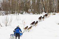 Rudi Niggemeier runs up the bank of the Kuskokwim river shortly before McGrath on Wednesday during Iditarod 2008