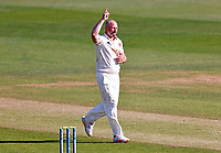 Darren Stevens of Kent celebrates taking the wicket of Rob Keogh during Kent CCC vs Northamptonshire CCC, LV Insurance County Championship Group 3 Cricket at The Spitfire Ground on 3rd June 2021