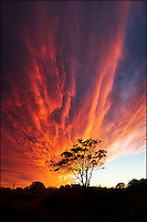 Dramatic sunset clouds like raging fire flames.