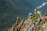 Man high above the Hoh River crossing the rocky spine of The Catwalk dividing High Divide and Bailey Range, Olympic Mountains, Olympic National Park, Washingon