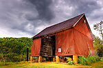 Rain dampens the roof of the old shed (and my camera lens) at Mountain Cove Vineyards.