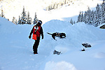 Crested Butte ski patrolman Shawn Williams and his chocolate avalanche rescue lab, Ziggy as Shawn trains Ziggy to search for avalanche survivors.
