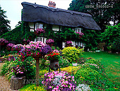 Tom Mackie, FLOWERS, photos, 11th Century Thatched Farmhouse, Lymington, Hampshire, England, GBTM990502-4,#F# Garten, jardín