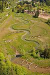 Powell Butte Stream Restoration, Gresham, Oregon