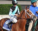 Tara From the Cape and jockey Ramon Dominguez before finishing 4th in the Darley Alcibiades at Keeneland Racecourse.October 5, 2012.