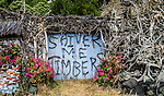 """Shiver Me Timbers"" at Otago Peninsula, South Island, New Zealand"