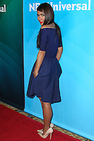 PASADENA, CA, USA - APRIL 08: Daniella Alonso at the NBCUniversal Summer Press Day 2014 held at The Langham Huntington Hotel and Spa on April 8, 2014 in Pasadena, California, United States. (Photo by Xavier Collin/Celebrity Monitor)