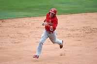 Palm Beach Cardinals second baseman Brett Wiley (26) running the bases during the first game of a doubleheader against the Dunedin Blue Jays on July 31, 2015 at Florida Auto Exchange Stadium in Dunedin, Florida.  Dunedin defeated Palm Beach 7-0.  (Mike Janes/Four Seam Images)