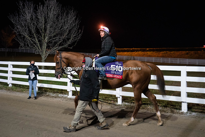 November 5, 2020: Lasting Legacy, trained by trainer Bob Hess, walks away from the track at Keeneland Racetrack in Lexington, Kentucky on November 5, 2020. Dan Heary/Eclipse Sportswire/Breeders Cup/CSM