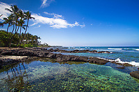Beautiful tide pool of lava rocks, with Pacific Ocean's clear turquoise water and palm trees, on the Big Island of Hawaii