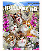 Howard, REALISTIC ANIMALS, REALISTISCHE TIERE, ANIMALES REALISTICOS, selfies,cats,hollywood, paintings+++++,GBHRPROV247,#a#, EVERYDAY