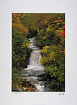 Poster by Bruce McGaw Graphics<br /> Falling Water<br /> Paper: 24 x 32 in. (61 x 81 cm.) <br /> Image: 17 x 25.5 in. (43 x 65 cm.) <br /> Perfect for mounting or framing. Watermark does not appear on product.