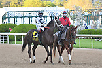 April 10, 2021:#6 Last Samurai in the Arkansas Derby at Oaklawn Park in Hot Springs,  Arkansas. Ted McClenning/Eclipse Sportswire/CSM