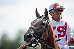 SARATOGA SPRINGS, NY - AUGUST 26: Practical Joke #1, with Joel Rosario up wins the Allen Jerkens Stakes at Saratoga Race Course on August 26, 2017 in Saratoga Springs, New York.(Photo by Alex Evers/Eclipse Sportswire/Getty Images)