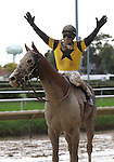 3 October 2009: AWESOME GEM & jockey David Flores celebrate after winning the 73rd running of the G2 Hawthorne Gold Cup at Hawthorne Race Course in Cicero/Stickney, Illinois.