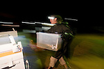 Guido Westhoff handles newly caught sea snakes after 3 hours of spotlighting the river's water surface.