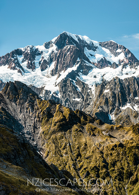 Highest peak of Southern Alps, Aoraki Mount Cook 3,724m from Mt. Fox, Westland Tai Poutini National Park, West Coast, UNESCO World Heritage Area, New Zealand, NZ