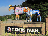 """Just in time for Mother's Day, artist Phil Davis has transformed Lemo's Horse into """"Soccer Mom"""" in Half Moon Bay, California."""