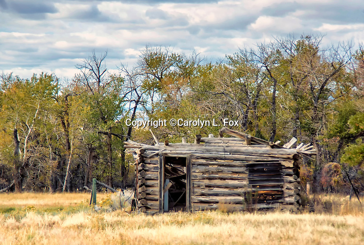 an old broken down log cabin stands in front of trees.