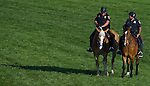 Members of the Baltimore Police Mounted Unit stand on the turf course  before the Preakness Stakes at Pimlico Race Course on May 19, 2012