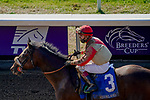 November 6, 2020: Rockertry, ridden by Irad Ortiz, Jr., wins the Thoroughbred Aftercare Alliance Stakes on Breeders' Cup Championship Friday at Keeneland on November 6, 2020: in Lexington, Kentucky. John Voorhees/Eclipse Sportswire/Breeders Cup/CSM