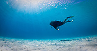 Scuba diver swims over sandy bottom, Bonaire, Netherland Antilles, Caribbean Sea, Atlantic Ocean, MR