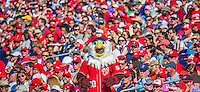 8 June 2013: Washington Nationals Macot Screech is surrounded by a sea of red attire during a game against the Minnesota Twins at Nationals Park in Washington, DC. The Twins edged out the Nationals 4-3 in 11 innings. Mandatory Credit: Ed Wolfstein Photo *** RAW (NEF) Image File Available ***