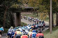 peloton rolling along<br /> <br /> 60th De Brabantse Pijl 2020 - La Flèche Brabançonne (1.Pro)<br /> 1 day race from Leuven to Overijse (BEL/197km)<br /> <br /> ©kramon