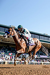 November 7, 2020 : Gamine, ridden by John Velazquez, wins the Filly & Mare Sprint on Breeders' Cup Championship Saturday at Keeneland Race Course in Lexington, Kentucky on November 7, 2020. Alex Evers/Eclipse Sportswire/Breeders' Cup/CSM